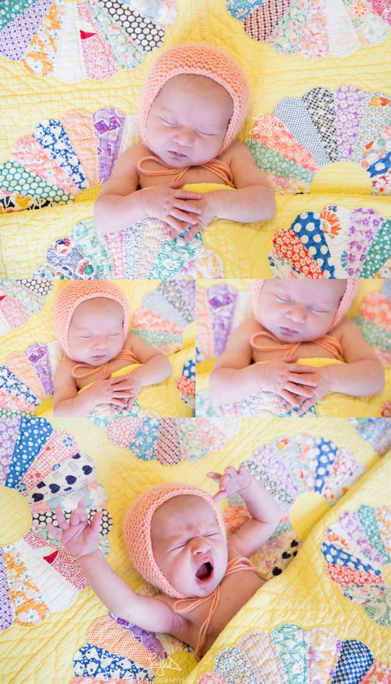 001_little_rock_newborn_photographer