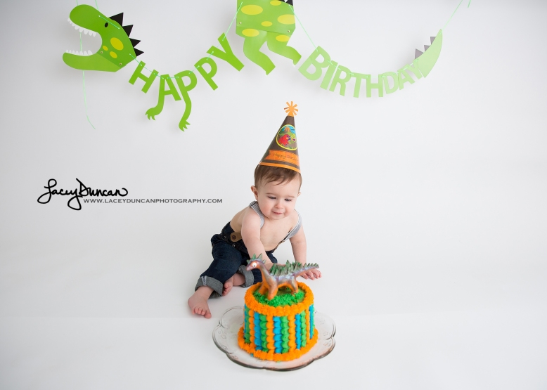 001_dino_smash_cake_little_rock_photographer