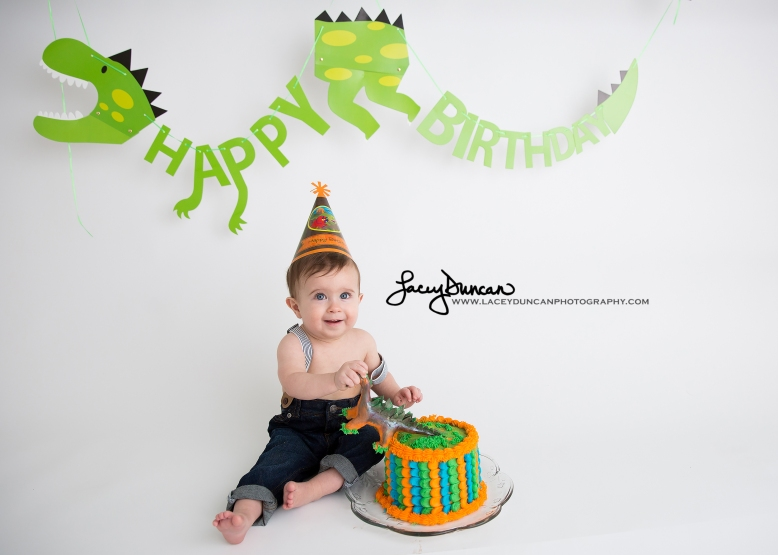 002_dino_smash_cake_little_rock_photographer