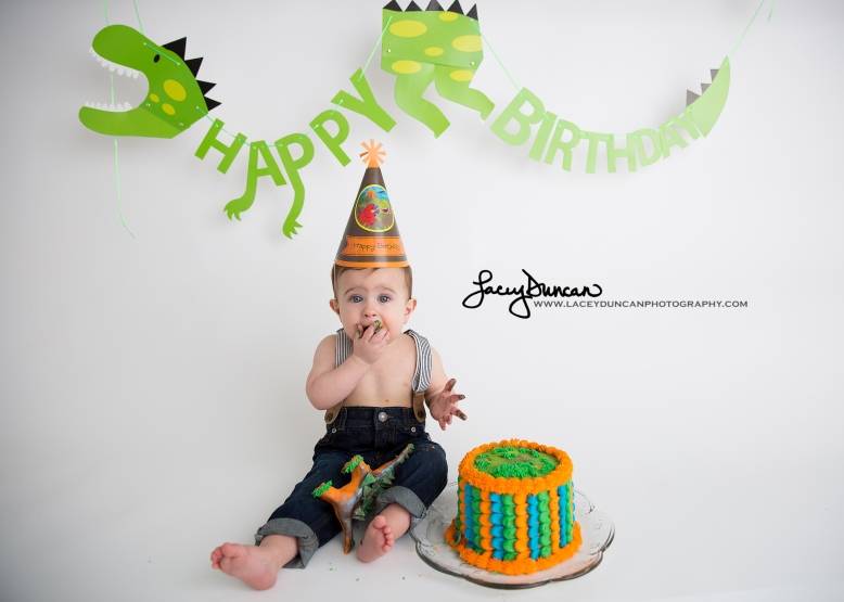 003_dino_smash_cake_little_rock_photographer