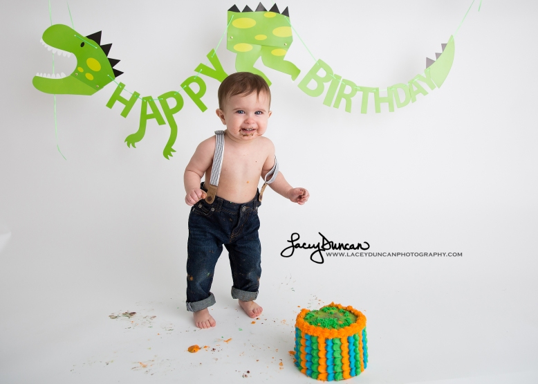 006_dino_smash_cake_little_rock_photographer