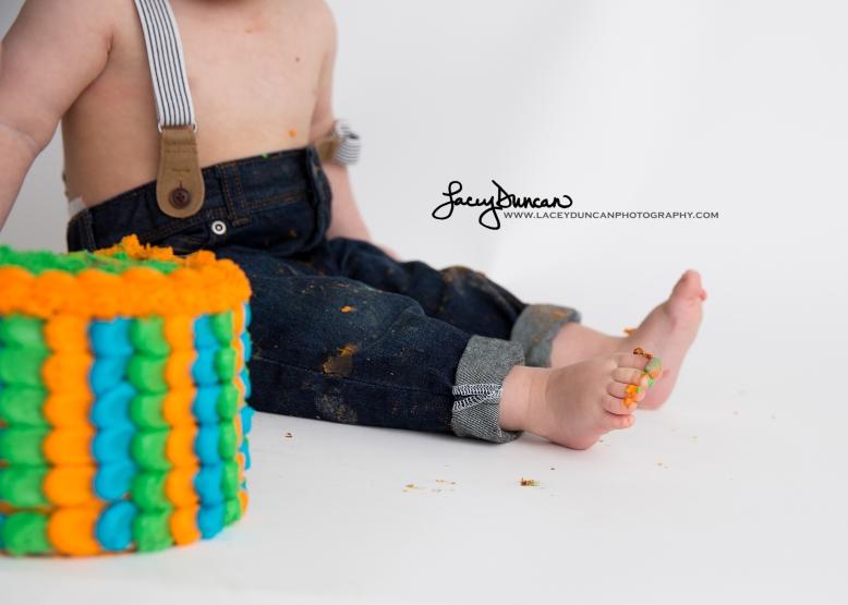 007_dino_smash_cake_little_rock_photographer
