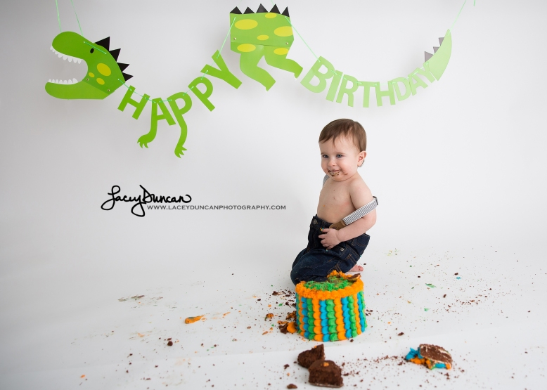 009_dino_smash_cake_little_rock_photographer