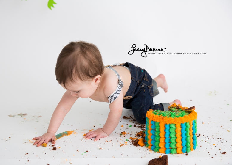 010_dino_smash_cake_little_rock_photographer