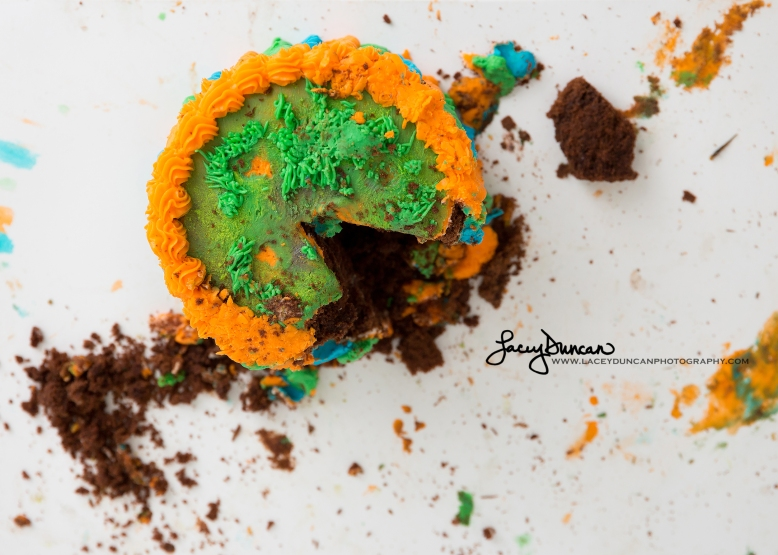 015_dino_smash_cake_little_rock_photographer