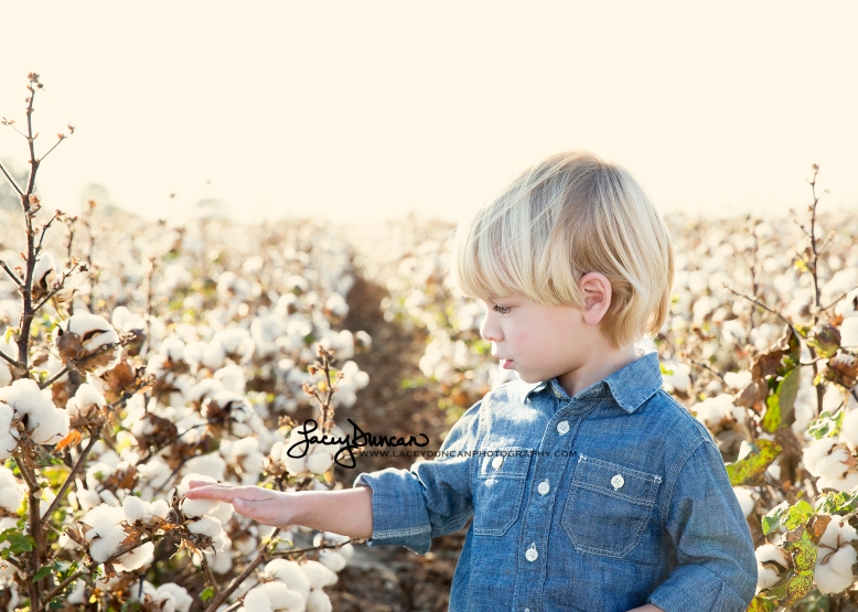 061_cotton_field_little_rock_family_portrait_photographer