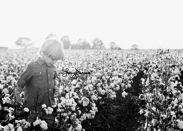 066_cotton_field_little_rock_family_portrait_photographer