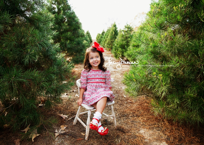 Christmas Tree Farm Mini Sessions.Christmas Tree Farm Mini Sessions Lacey Duncan Photography